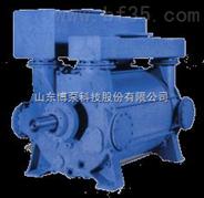 博山 淄博 博泵 SZB  2BE SK szb水环式真空泵 2BV