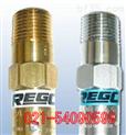 美國REGO安全閥/美國REGO氧氣安全閥