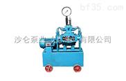 4DSY电动试压泵系列