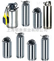 微型不锈钢潜水泵