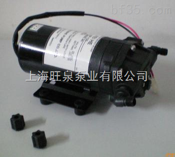 dp-100微型电动隔膜泵