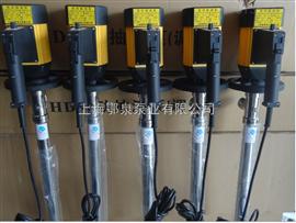 HDHD系列调速电动抽液泵
