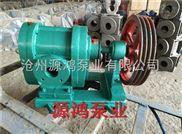 ZYB55-源鸿品牌直销ZYB55硬齿面渣油泵,耐腐蚀渣油泵