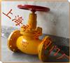 上海液氨专用截止阀液氨截止阀
