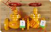 $氨用截止阀加工�上海氨用截止阀厂家WCB铸钢氨用截止阀